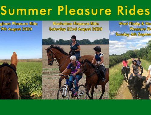 Summer Pleasure Rides
