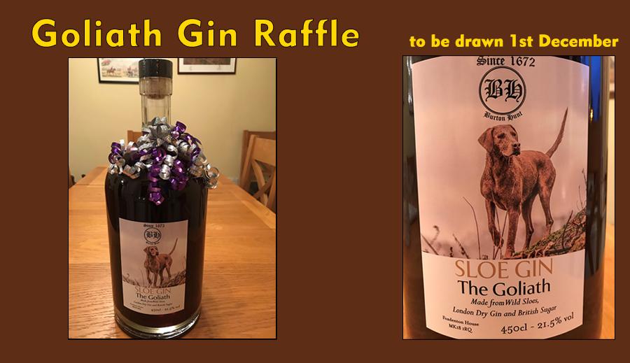 Goliath Gin Raffle